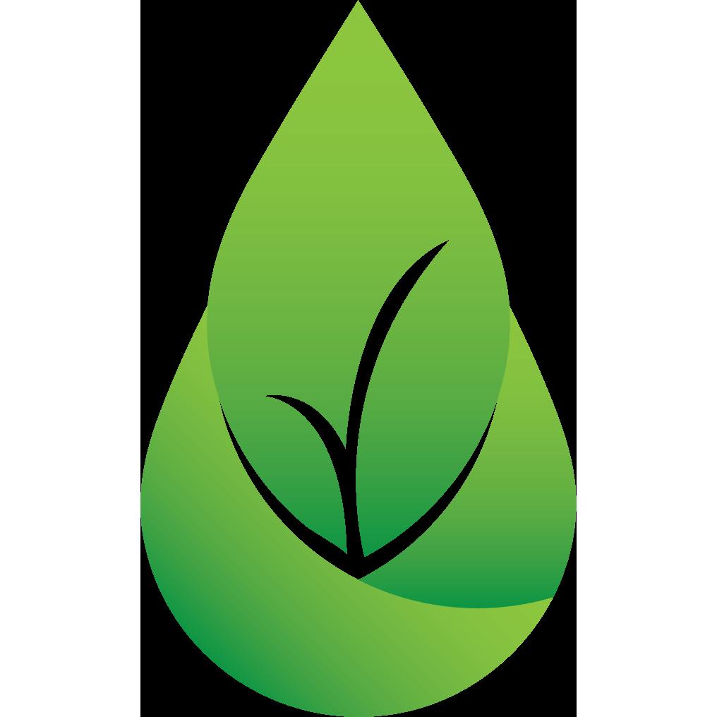 Modso Clean Logo